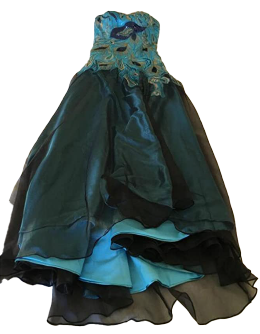 Ailimisi New Peacock Long Dress-image