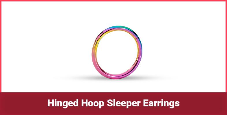 Hinged Hoop Sleeper Earrings