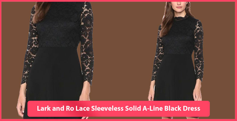 Lark and Ro Lace Sleeveless Solid A-Line Black Dress